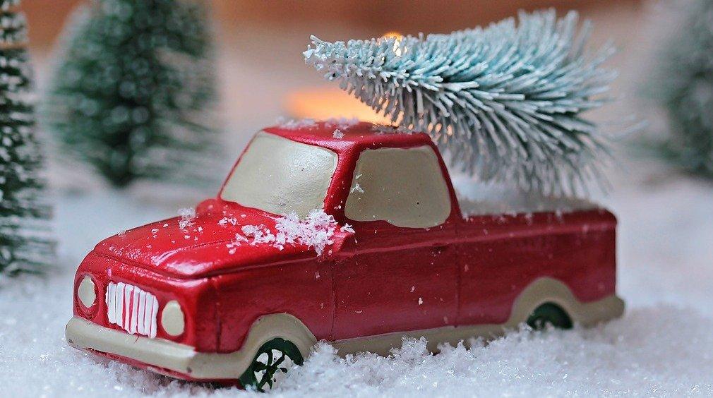 Weihnachtsbaumlieferung Wardenburg WFV Dittmer Pixabay s.hermann f.richter fir-tree-1856343_1010